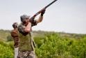 Cordoba-Dove-Hunting